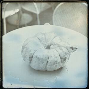 Takashi Arai, 'Pumpkin, September 27', 2014
