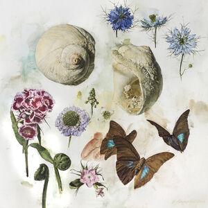 Jeffrey Ripple, 'Shells, Butterflies, and Flowers ', 2018