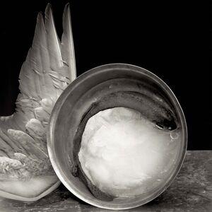 Zoë Zimmerman, 'Wing and Fish Bowl', 2005