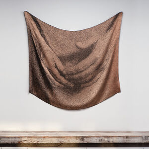 Lia Cook, 'Presence/Absence Barely', 1998
