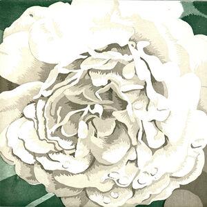 Julia Jacquette, 'Four Pieces of White', 2003