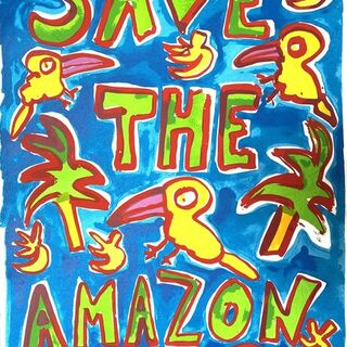 Save the Amazon