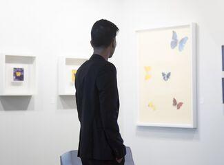 SP-Arte Announces Participating Galleries