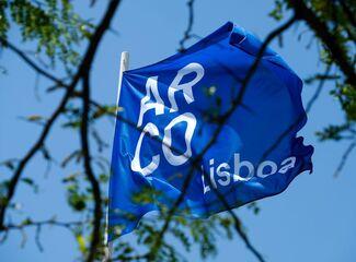 The art world returns to Lisbon with the celebration of ARCOlisboa 2019