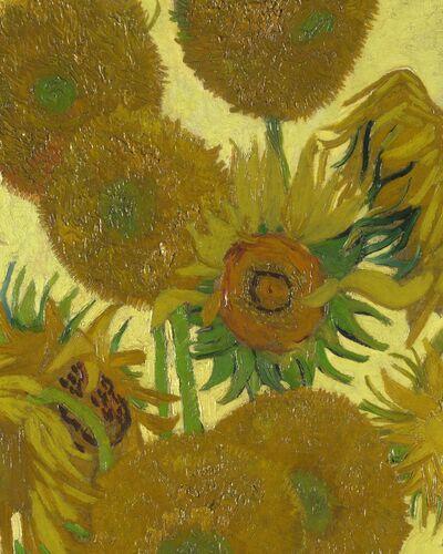 Rodarte | Vincent Van Gogh