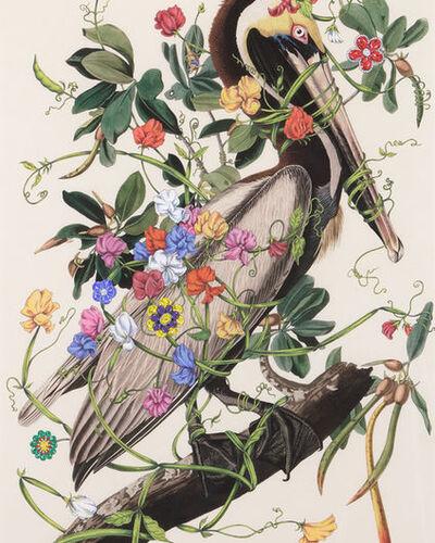 Heather James Fine Art