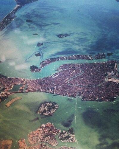 Trendspotting the Biennale: Venice Notes