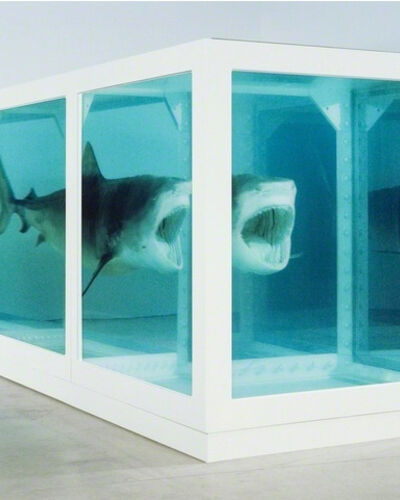#9: Damien Hirst, The Physical Impossibility of Death in the Mind of Someone Living (1991)