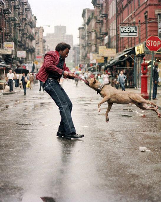 The 9 Best Works at Paris Photo L.A.
