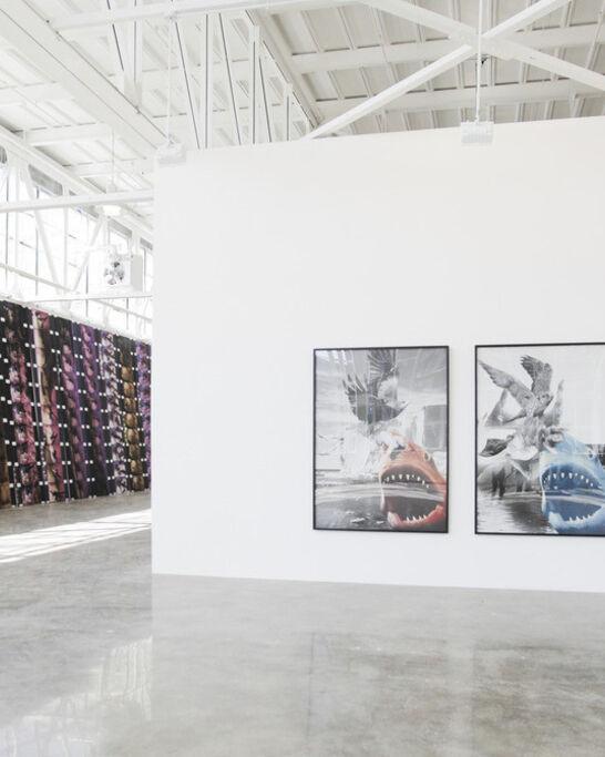 Top 11 Gallery Exhibitions