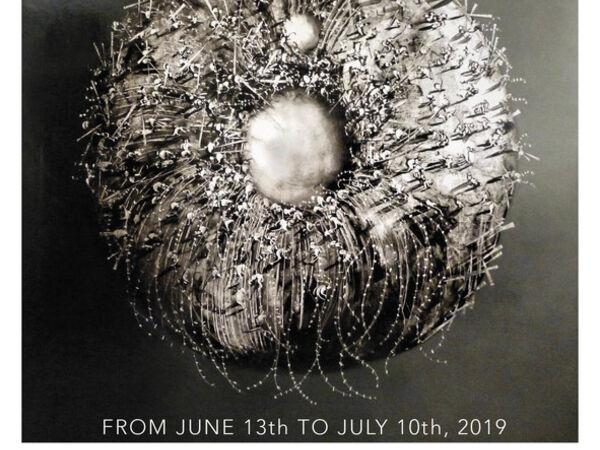Cover image for José Benítez : Imaginary Worlds
