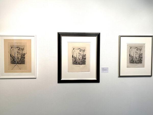 "Cover image for Pablo Picasso - ""Histoire naturelle"""