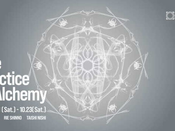 Cover image for The Practice of Alchemy