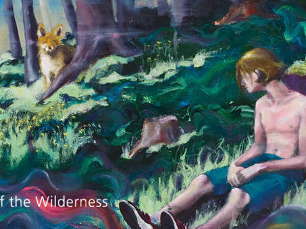 Cover image for Child of the wilderness
