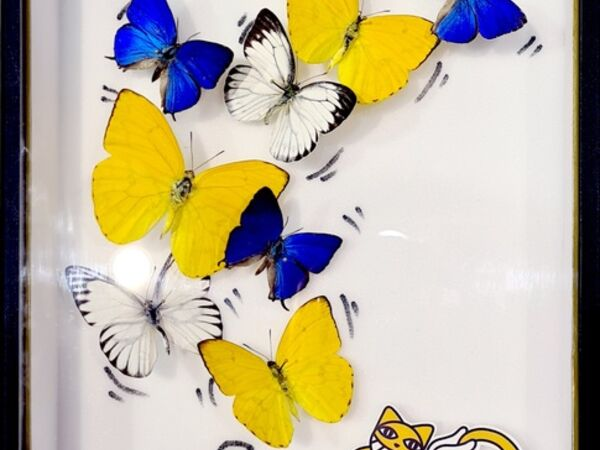 Cover image for Butterflies Fever