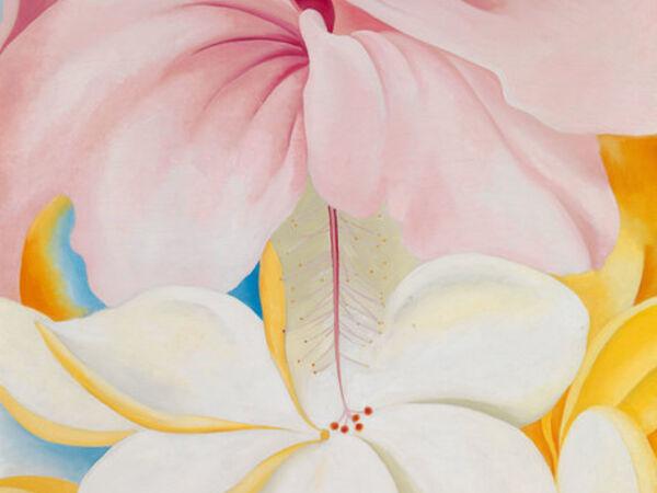 Cover image for Georgia O'Keeffe: Visions of Hawai'i