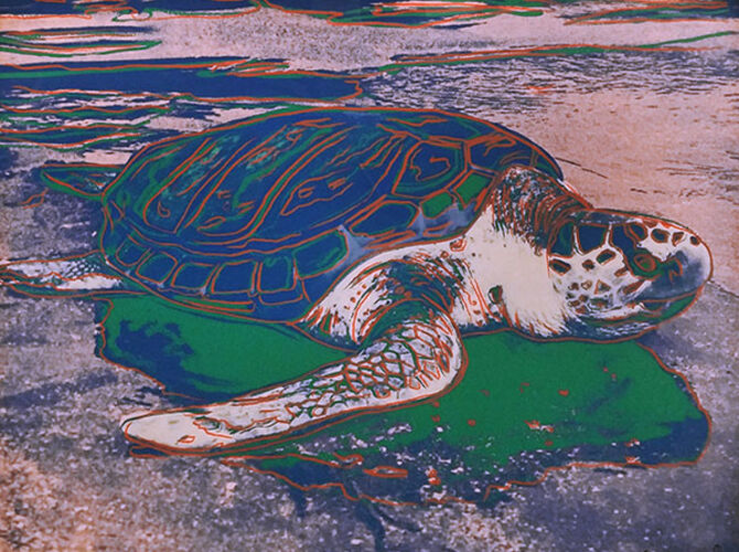 Turtles by Andy Warhol