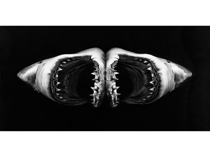 Sharks by Robert Longo