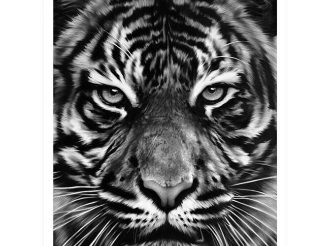 Tigers by Robert Longo