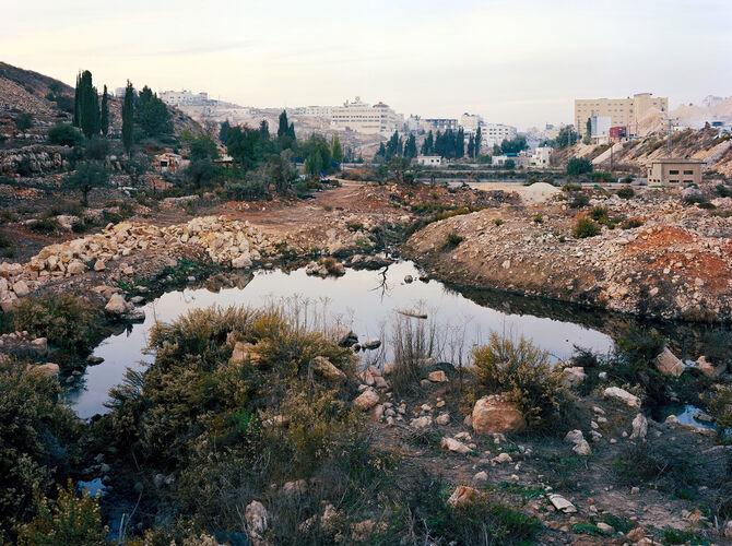 Israel by Thomas Struth
