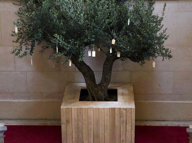 Wish Tree by Yoko Ono