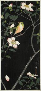 Japanese White-Eye and Camellia
