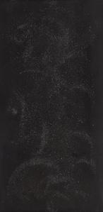 El negro 2930