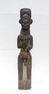 Male Stature Congo