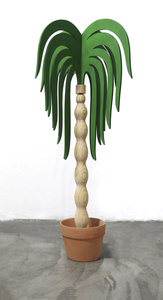 Planta 8