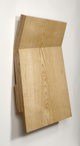 Wood Fold #1