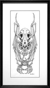 Just A Bat Skeleton Of Sorts, I Guess