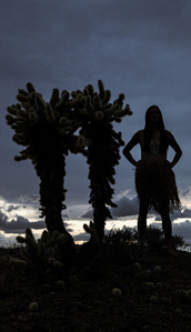 Nuwuv Woman (Silhouette with Cholla)