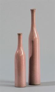 Vases Bouteilles Rose