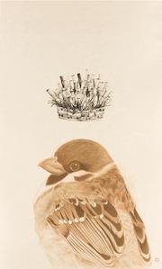 Coronation of Sparrow Queen in Mexico City