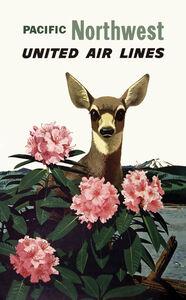 United Air Lines - Pacific Northwest - Deer