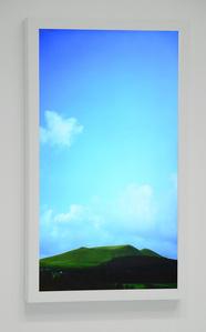 A New Landscape #1