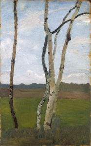 Birkenstämme vor Landschaft,(Birch Trees in Front of a Landscape)