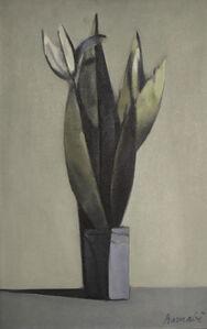 Bouquet: Blue Background