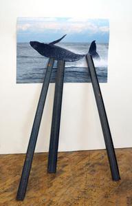 Entangled Image (Humpback whale)