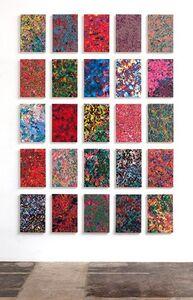 Lichtenstein Series
