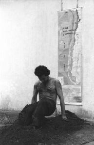 La Araucana 81