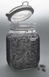 Kui Hua Zi (Sun Flower Seeds)