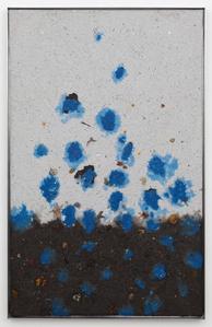Blue seeds