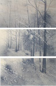 Walkscapes #2, triptych