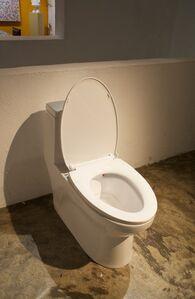Toilette Seat