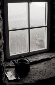 Rackwick, Hoy, Orkney