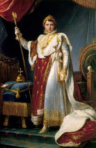 Napoleon in State attire