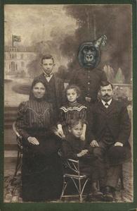 Untitled - Gorilla