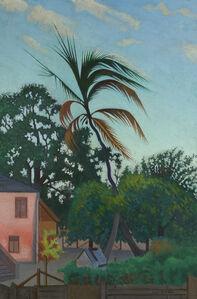 Palm Tree, Barbados