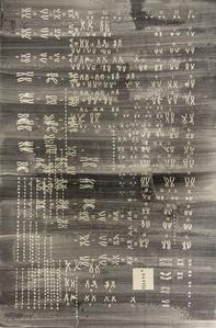 Codex Genome 024